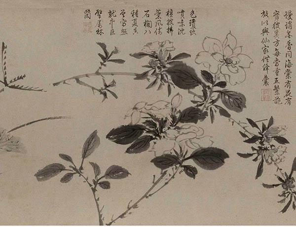 张伯驹收藏的明周之冕《百花图》卷欣赏【9】