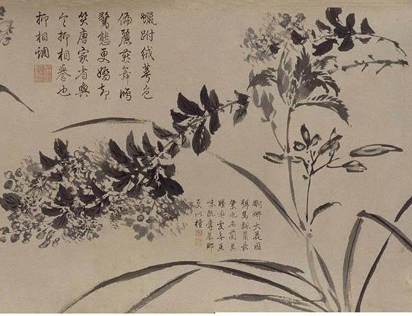 张伯驹收藏的明周之冕《百花图》卷欣赏【18】