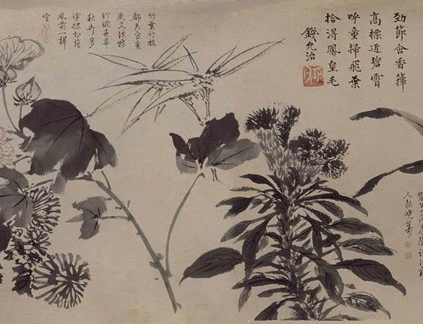 张伯驹收藏的明周之冕《百花图》卷欣赏【11】